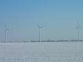 Windpark im Marchfeld