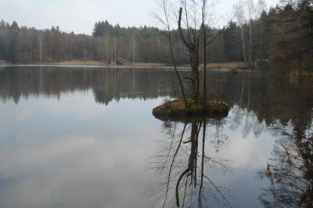 Bei Litschau